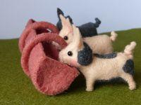 Viltpakketjes Peter Rabbit Oog Vd Naald Poppedijne Wolviltnl